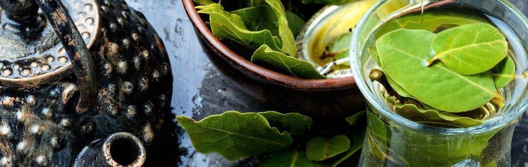 Assam te – Historien om en af verdens mest berømte teer